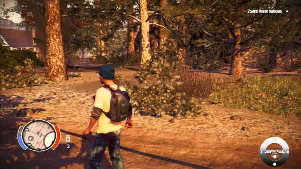 stateofdecay00